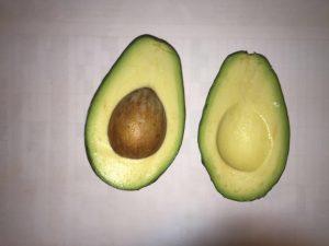 Avocado fruit Elsje Joubert